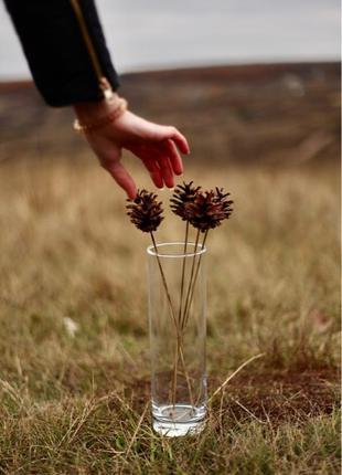 Еловые шишки Новогоднее украшение Сухоцветы Пампасная трава Букет