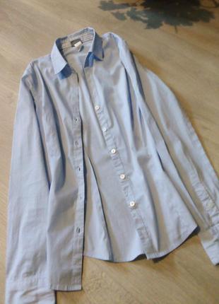 Рубашка полоска h&m