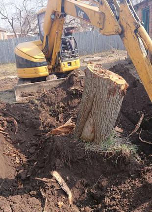 Уборка территории. Удаление деревьев и кустов. Вывоз веток