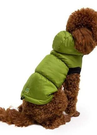 Одежда для собак Жилет яблоко