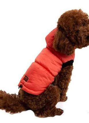 Одежда для собак Жилет оранж