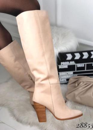 Сапоги демисезон на каблуке
