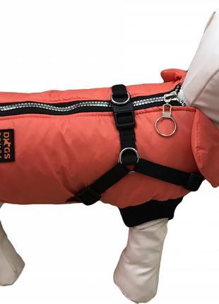 Одежда для собак Жилет с шлеей оранж