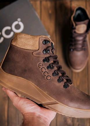 Мужские кожаные зимние ботинки Ecco, зимние ботинки, ботинки