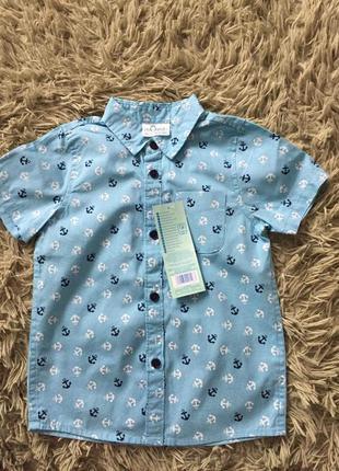 Рубашечка і штанці для хлопчика