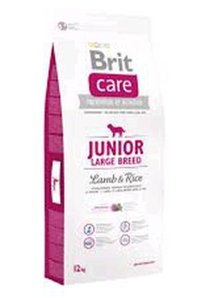 Корм для щенков Brit Care Junior Large Breed Lamb & Rice 12 кг