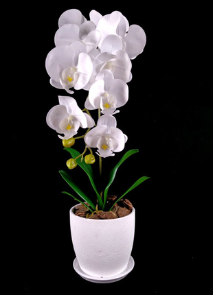 Штучна орхідея/Искуственная орхидея