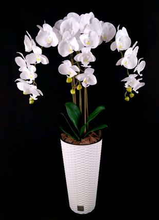 Орхидея из латекса/Искуственная орхидея