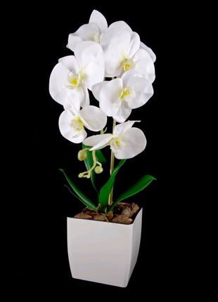 Орхидея из латекса/Искуственная оохидея