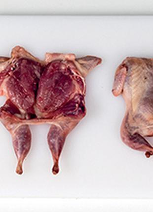 Мясо перепелов (несушка 6-9 месяцев)