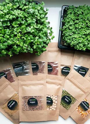 Набор для выращивания Микрозелени 8 урожаев