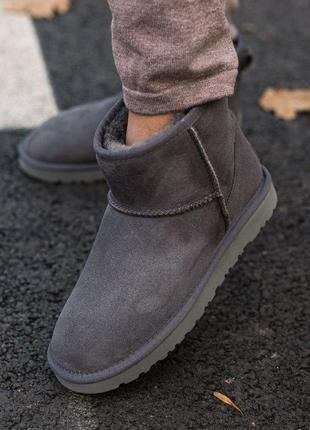 Классические угги  ugg classic mini ii boot gray серые / сапог...