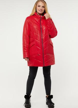 Куртка стильная яркая с капюшоном осень-зима размеры: 54-64