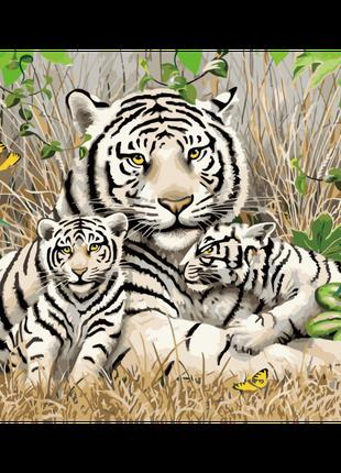 Картина по номерам Семья бенгальских тигров, размер 40-50