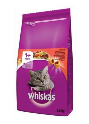 Корм для котів whiskas