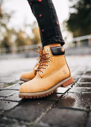 Зимние Ботинки Timberland Ginger Термо/Мех Размеры 36-45 Хит