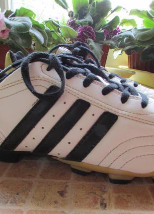 Бутсы футбольные adidas длина по стельке 24 см