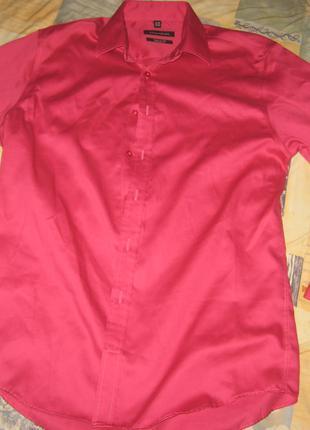 Рубашка Bellissimo, р. L (46-48), б/у