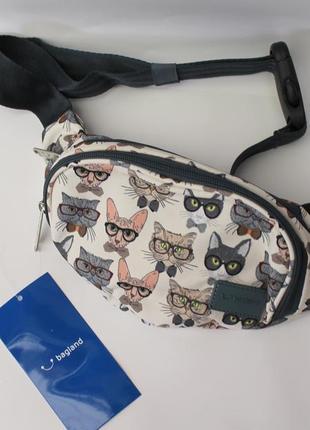 Бананка, барсетка, поясная сумка, коты, барыжка, сумка на пояс