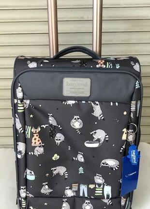 Чемодан, маленький чемодан, еноты, валіза, ручная кладь, самол...