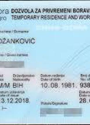 ВНЖ в Сербии и Черногории. Регистрация компании