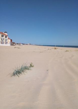 Затока Курорт продам 60 соток 1 линия от моря.