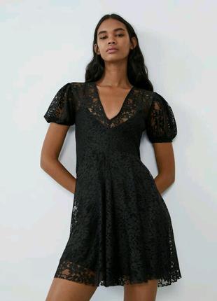 Платье в кружево Zara. Женское кружевное платье. Сукня Зара