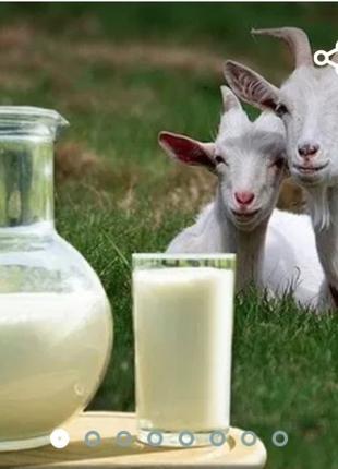 Козине молоко
