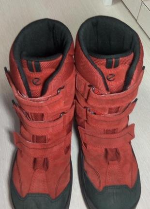Термо ботинки ecco gore tex