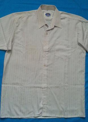 Рубашка мужская -  белого цвета с  полосками, короткий рукав, нов