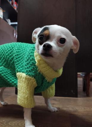 Одежда для собаки / одежда на собаку / свитер на собаку