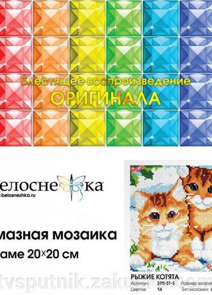 Алмазная вышивка «Рыжие котята» (Код:370-ST-S)