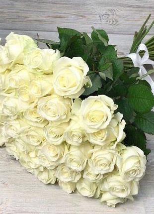 Белая роза. Букет из белой розы 51 101 151 доставка по Киеву