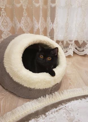 Меховый домик лежак для кошек котов собак очень теплый в наличии!