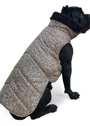 Одежда для собак Попона