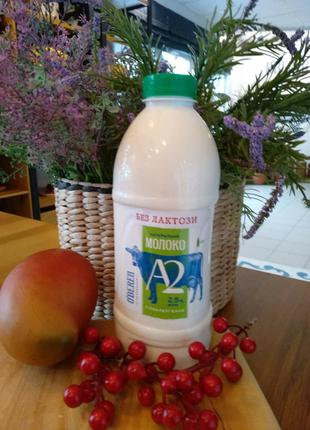 А2 молоко Без Лактози