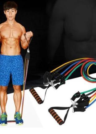 Набор трубчатых эспандеров для фитнеса 5 штук / Многофункциональн