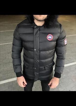Супер цена! распродажа сезона! мужская куртка пуховик canada