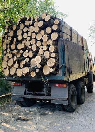 Предоставляем доставку дров граб, дуб, акацию по доступным ценам