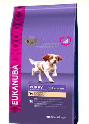 корм Eukanuba puppy lamb &rice 12kg
