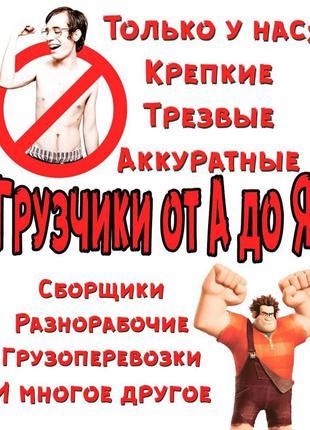 Вантажники/грузчики,першокласні працівники!!!