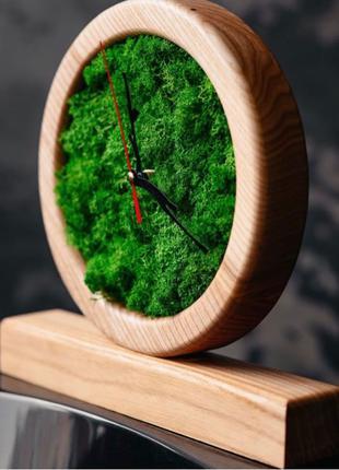 Часы,Часы с стабилизированным мхом,Часы из дерева