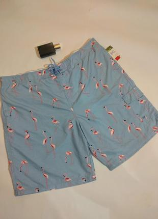 Новые пляжные шорты в принт фламинго размера 3 xl