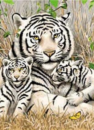 """По номерам """"Семья бенгальских тигров"""" 40*50 см"""