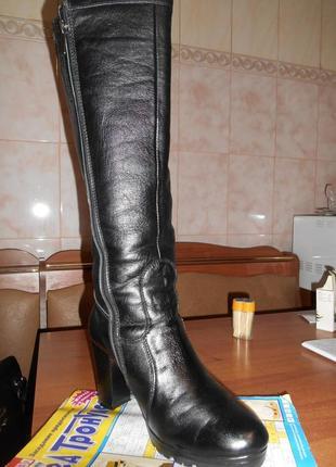 Сапоги кожаные,натуральный мех-европейка