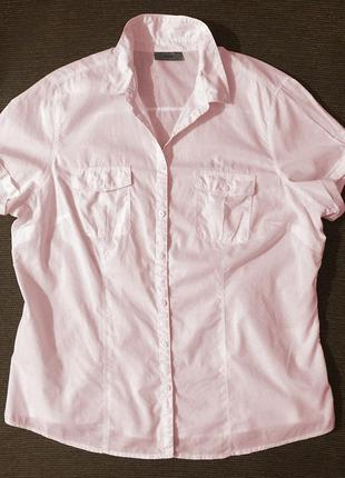 Женская нежно-розовая рубашка с коротким рукавом хлопок