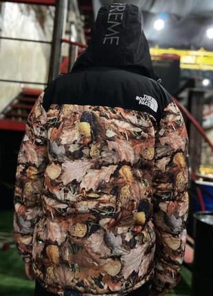 Мужской зимний пуховик supreme x tnf nuptse 700 backpack maple...