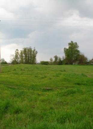 земельный участок (Брусилов)