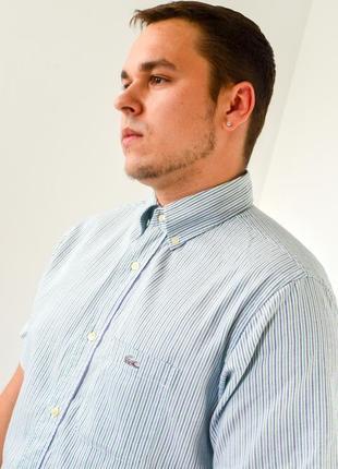 Lacoste светлая рубашка в полоску с логотипом и коротким рукав...