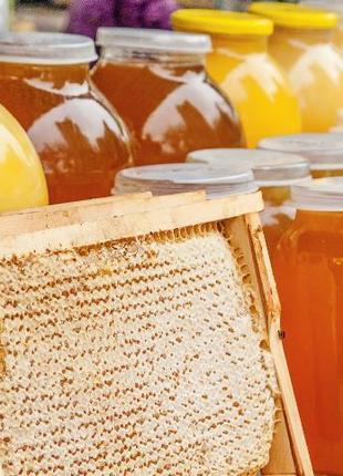 Мед подсолнечника оптом 2.5 тонны по 40 грн за килограмм.